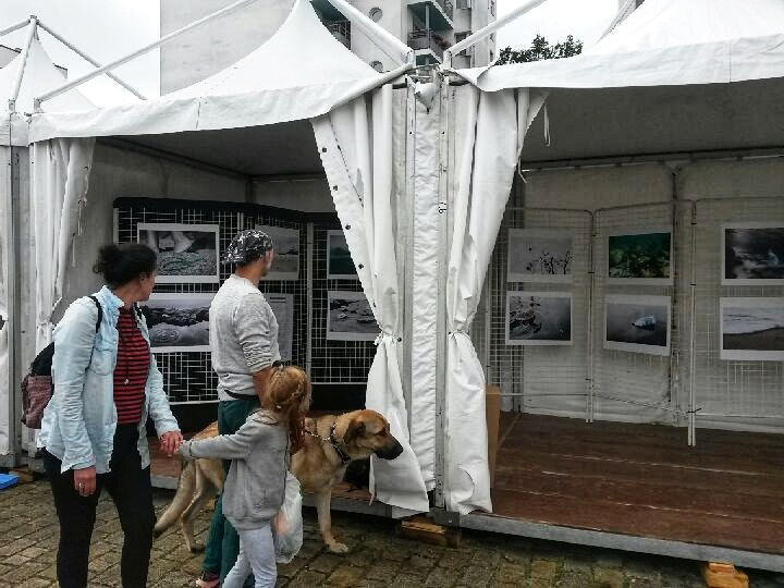 festival interceltique avant les continents exposition plastique
